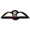 rafwings_sm